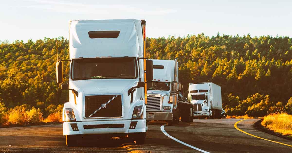 La Solución de Software de Entregas y Rutas de Reparto. Mejora la eficiencia de tu Servicio de Entrega y Reparto Logístico.